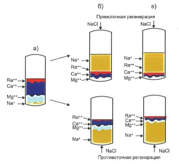 Схема распределения катионов при сорбции (а), прямоточной и противоточной (б, в) регенерации